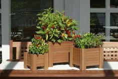 tutorial como fazer cachepot de madeiras - Pesquisa Google
