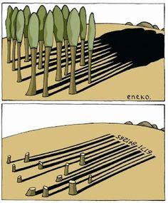 Por un arbol que se tale, se deben sembrar 3.  En realidad deben ser mas ya que nadie lo hace :(