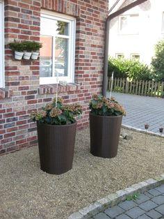 Hausfassade / Außenansichten 'Vorgarten '10'