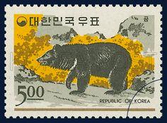 POSTAGE STAMP OF FAUNA, Bear, Animals, Yellow, black, Gray, 1966 12 15, 동물시리즈, 1966년12월15일, 538, 곰, postage 우표