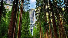 "Peaceful Music, Relaxing Music, Instrumental Music, ""Yosemite"" by Tim Janis"
