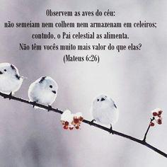 Descanse no Senhor...