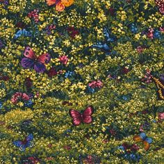 Items similar to Butterflies in Trees Fabric from Nature Studies 2 - Spring Robert Kaufman by the Yard on Etsy Spring Nature, Nature Study, Robert Kaufman, Over The Rainbow, Fabric Patterns, Etsy Store, Sewing Projects, Butterfly, Quilts
