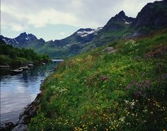 Fjords of Norway | by Jeremy Kressmann ( RSS feed ) on May 15th 2011 at 7:15PM