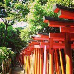 Nezu Shrine, Tokyo.