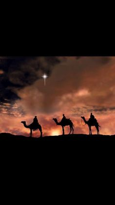 The three wise men travels a distance to honor and adore baby Jesus. Christmas Scenes, Christmas Quotes, Christmas Pictures, Christmas Art, Vintage Christmas, Christmas Holidays, Christmas Nativity Scene, Xmas, Christmas Decorations