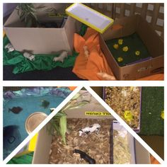 Creating something from almost nothing. Farmyard experience set-up using recycled cardboard boxes and natural materials. Cardboard Boxes, Farm Yard, Child Care, Reggio, Natural Materials, Toddler Bed, Recycling, Inspired, Children
