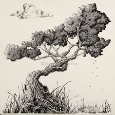 trees drawing Bonsai Tree artwork out of Asheville, Nc. The perfect gift idea as . Bonsai Tree artwork out of Asheville, Nc. The perfect gift idea as . Tree Drawings Pencil, Ink Drawings, Drawing Trees, Realistic Drawings, Drawing Art, Bonsai Tree Tattoos, Japanese Bonsai Tree, Tree Sketches, Tattoo Sketches