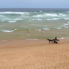 Sénégal, charrette a la plage.