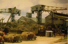 Central Plata en San Sebastián,donde trabajaban tantos puertorriqueños. Que mucha caña de azúcar se cosechaba en Puerto Rico,