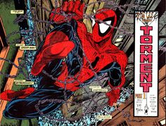 """""""Torment"""" by Todd Mcfarlane"""