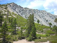 Mt. Baldy (Mt. San Antonio) - San Bernadino Nat'l Forest - 62 miles away, information about trails