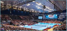 Tennis Live: Watch Online ATP Erste Bank Open Tennis Live Strea...