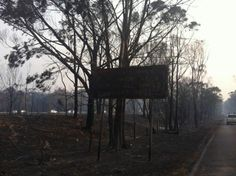 18.10.13: Yanderra - parallel to the Hume Hway - 'Äè@barryofarrellvia triplem sydney