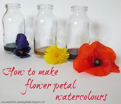 Natural watercolors from flower petals