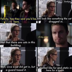 "1x12 Vertigo - ""You look like something the cat dragged in."" - Oliver  Felicity, Arrow"