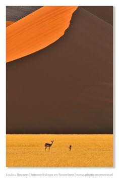 Wild Namibia. Door communitylid LoulouBeavers - NG FotoCommunity ©
