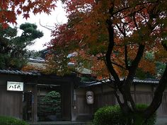 Yachiyo Ryokan, Kyoto Japan
