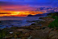 Paradise Cove Luau | Paradise Cove Luau.Hawaii. | Flickr - Photo Sharing!