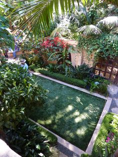 Gardens by David Feix