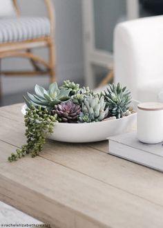 DIY Faux Succulent Terrarium for Boho Home Decor. DIY Faux Succulent Terrarium for Boho Home Decor. Succulent Display, Succulent Centerpieces, Hanging Succulents, Artificial Succulents, Succulents In Containers, Faux Succulents, Faux Plants, Succulent Arrangements, Artificial Cactus