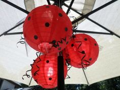 Outdoor nylon lanterns are decorated with black dots and black ribbon for our lady bug pool party decorations. Pool Party Games, Pool Party Kids, Pool Party Decorations, Kid Pool, Cheap Paper Lanterns, Hanging Paper Lanterns, Ladybug Party Supplies, Pool Candles, Black Dots