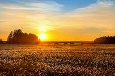 #Sunset at #lea. #BeautifulPhoto