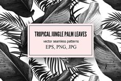 Tropical palm leaves vector patterns @creativework247