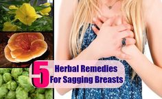 5 Herbal Remedies For Sagging Breasts | http://www.searchhomeremedy.com/5-herbal-remedies-for-sagging-breasts/