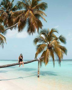 Sun Aqua Vilu Reef #Maldives photo @heyjenniferjones @sunaquavilureef #мальдивы #maldivesislands #Maldiven #Maldivas #马尔代夫 #モルディブ #Malediwy #blue #bestvacations #luxuryworldtraveler #wonderful_places #honeymoon #instapassport #goneoutdoors #luxuryworldtraveler #nakedplanet #discoverearth #keepexploring #TLPicks