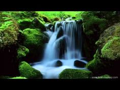 Photo about Beautiful landscape of flowing water from mountain stream. Image of beauty, beautiful, motion - 17075673 Relaxation Meditation, Guided Meditation, Small Waterfall, Nature Sounds, Forest Art, Great Photographers, Relaxing Music, Renoir, Nature Photos