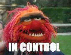 ANIMAL!!! Anger management. Muppet fans know what's up.
