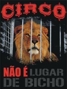 Circo não é lugar de animais! #salve #proteja #animais http://timevencedor.com