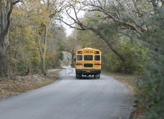 Rural buss route....lots of memories.