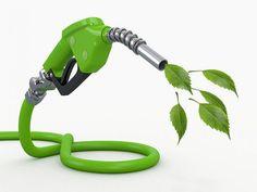 Por la traba al biodiésel cayó la venta de aceite: Ciara formuló una drástica advertencia. #Biodiésel #Cayó #Venta #Aceite #Traba #Ciara…