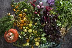 Colourful fruit and veg from Babylonstoren's garden. Weird Food, Crazy Food, Garlic Flower, Fermentation Crock, Wild Garlic, Sour Taste, Celery Juice, Colorful Fruit, Organic Vegetables