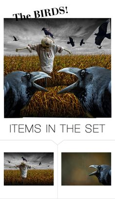 """""""The Birds--are back!"""" by laughingdog ❤ liked on Polyvore featuring art"""