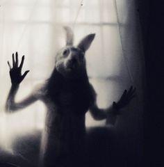 b, black and white, dark, mask, rabbit, scary