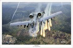 """Officially named the A-10 Thunderbolt II, this unique aircraft is known as the """"Warthog"""" by those who operate and maintain it. Some say it is an ugly airplane but when called upon to deliver close ..."""