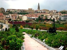 Culinary Travel: Culinary Destination - North of Spain (The Holy Grail of Culinary Destinations)