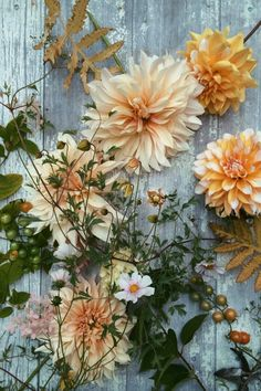 Cream, peach, and light orange. Fall ferns, Cafe au Lait dahlia, and yellow tomatoes. Some pink hues in the cosmos (Daydream mix would work) and late season hydrangea. Flowers – Saipua
