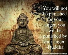"""You will not be punished for your anger, you will be punished by your anger."" Buddha"