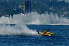 Unlimited Hydroplane Racing at Seafair, Seattle. (Lee Lafleur)
