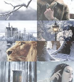 Fairy Tale(ish) Picspam→ The Lion, the Witch, and the Wardrobe