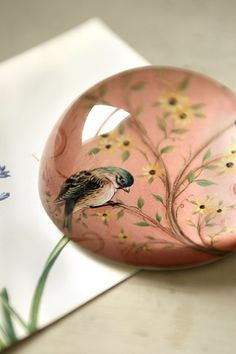 pretty paperweight