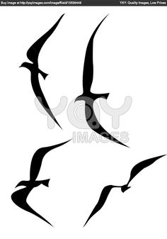Image from http://tattoomagz.com/wp-content/uploads/flying-bird-silhouette-tattoo-royalty-free-image-of-flying-birds-silhouette-on-white-background-55655.jpg.