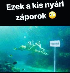 Amikor egyeseknél a már túlzás😂 Some Jokes, Everything Funny, Funny Times, Me Too Meme, Funny Fails, Really Funny, Make You Smile, Funny Photos, Puns