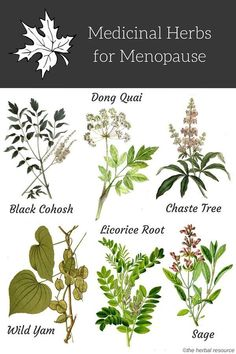 Medicinal Herbs for Menopause Relief and Treatment Herbal menopause treatment can be used to treat symptoms such as night sweats, hot flushes, vaginal dryness and painful intercourse, headaches and increased anxiety. Healing Herbs, Medicinal Plants, Natural Healing, Natural Life, Herbal Plants, Holistic Remedies, Natural Home Remedies, Health Remedies, Natural Medicine