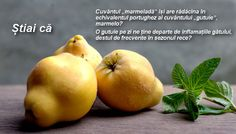 Ingredient of the week: Quince Manchego Cheese, Fall Fruits, Pomegranate, Nutrition, Food, Canada, Legumes, Food Items, Diet