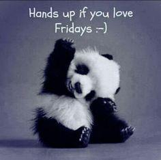#Friday #TGIF #Panda #Cute
